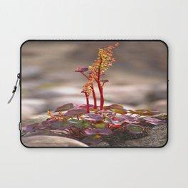 Wildflower between stones scandi landscape Laptop Sleeve