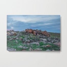 At the Top of the World: 2 Metal Print