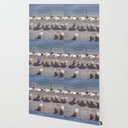 White Beach Umbrellas Wallpaper