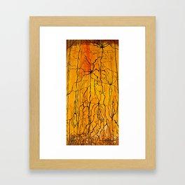 Neural Activity (An Ode to Cajal) Framed Art Print