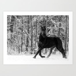 Friesian Mare in Snow Art Print