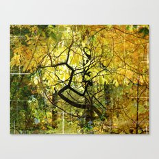 The Dense Forest Of Imagination Canvas Print