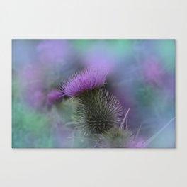 little pleasures of nature -164- Canvas Print
