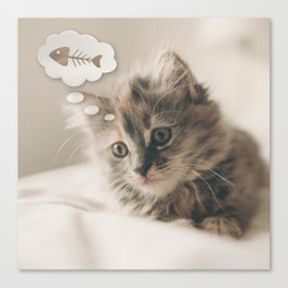 Dreaming Cat Canvas Print
