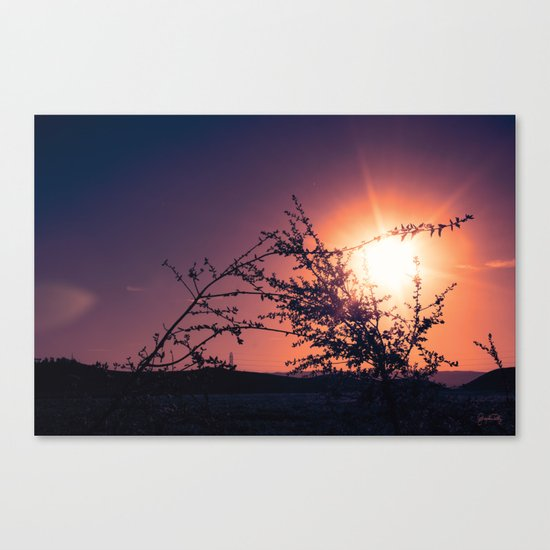 Catching the Moment (Coral Orange Sunset, Dark Violet sky) Canvas Print