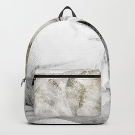 Breath of Frost Backpack