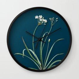 Vintage Allium Fragrans Botanical Illustration on Teal Wall Clock