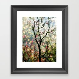 Passing Through, While looking for you Framed Art Print