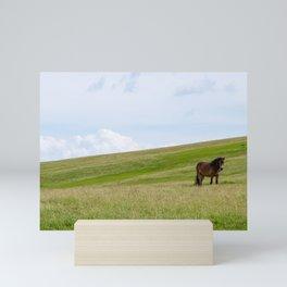 Wild horse roaming Mini Art Print
