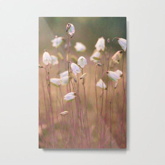 Wild flowers(8) Metal Print