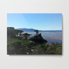 Tree at Pebble Beach Metal Print