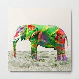 Kleure De Afrika Metal Print