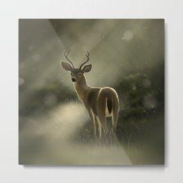 Dear deer.. Metal Print
