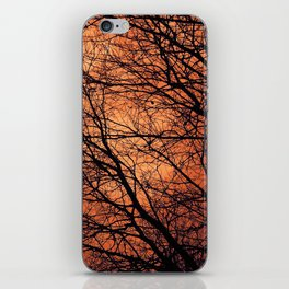 The Enchanted Forest 2 iPhone Skin