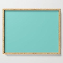 Aqua Blue Simple Solid Color All Over Print Serving Tray