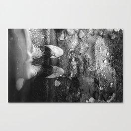 Wine Soaked Feet Canvas Print
