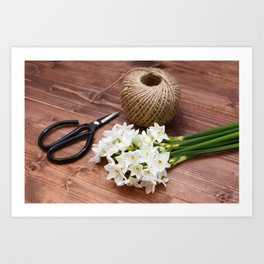 Narcissi with scissors and twine Art Print