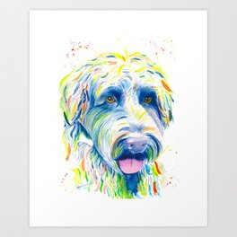 Maggie (The labradoodle) Art Print