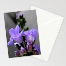Lav Stationery Cards