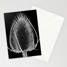 Black & White Teasel Stationery Cards