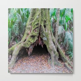 Interesting Tree Trunk Metal Print