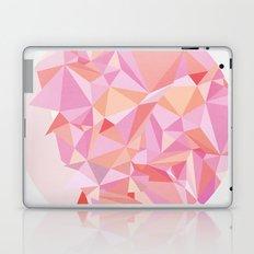 Circle 3 Laptop & iPad Skin