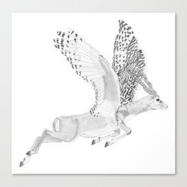 Combinations #7 - Antelope / Owl (FINAL) Canvas Print