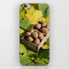 Fall still life italian walnut fruit iPhone Skin