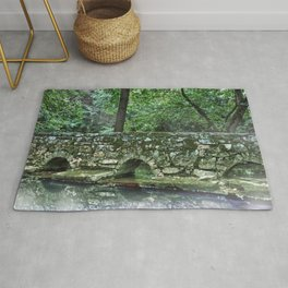 A Walk across the River Rug
