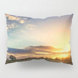Sunny Disposition Pillow Sham