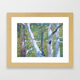 Radiant and Free Framed Art Print