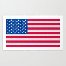 United States of America Flag (Patchwork) Art Print