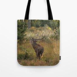 Red deer, rutting season Tote Bag
