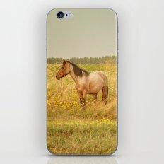 0807 iPhone & iPod Skin