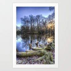 The English Morning Frosty Pond Art Print