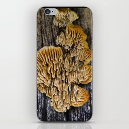 Spores on Wood #1 iPhone Skin