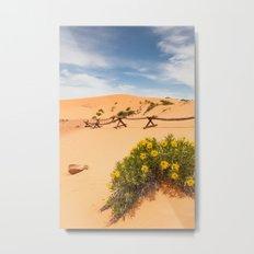 Coral Pink Sand Dunes Metal Print