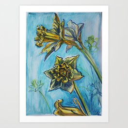 Daffodil sketch Art Print