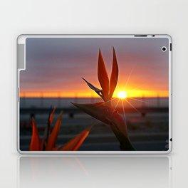 Bird of Paradise Sunburst by Aloha Kea Photography Laptop & iPad Skin