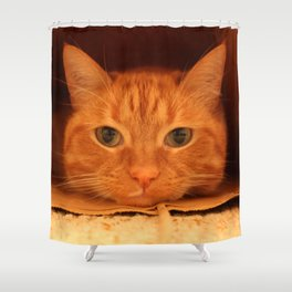Cat in a Bag Shower Curtain