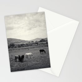 HORSE'S VALLEY Stationery Cards