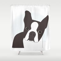 boston terrier Shower Curtains featuring Boston Terrier by Kelsey Fiorella