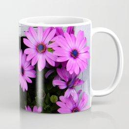 daisies through the fence Coffee Mug