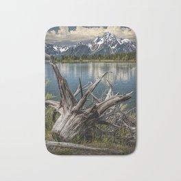 Tree Stump on the Northern Shore of Jackson Lake at Grand Teton National Park Bath Mat