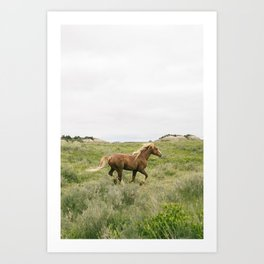 Wild Horses Couldn't Keep Me Away Art Print
