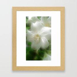 White Shiny Jasmine Framed Art Print