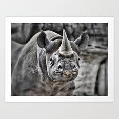 Rhino, Rhino! Art Print