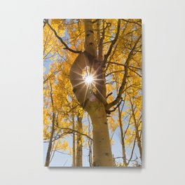 Aspen Sunstar Metal Print