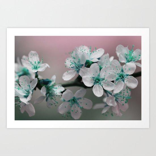 Teal Blossom Art Print