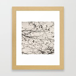 boughs pale Framed Art Print